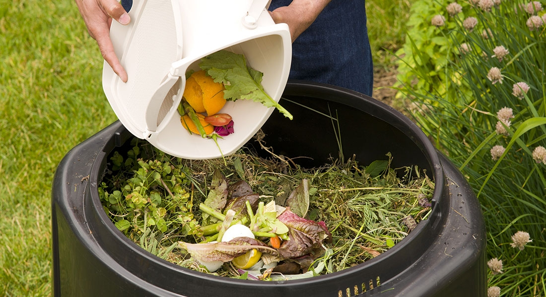 composting 2