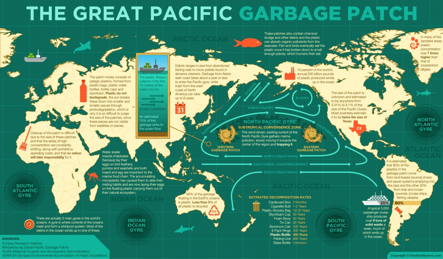 garbage patch