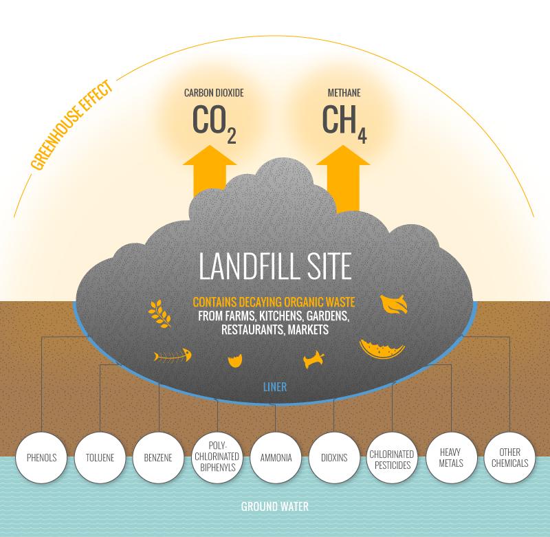 landfill environment